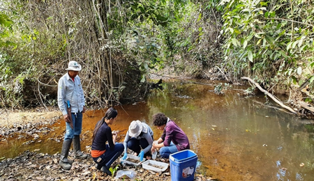 Avaliação de vibração ambiental em São Caetano do Sul